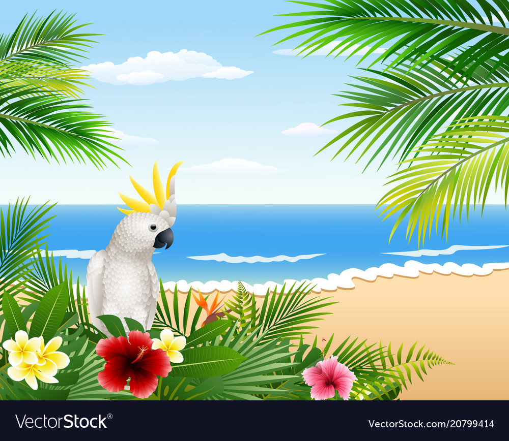 Tropical beach cards plants and parrots
