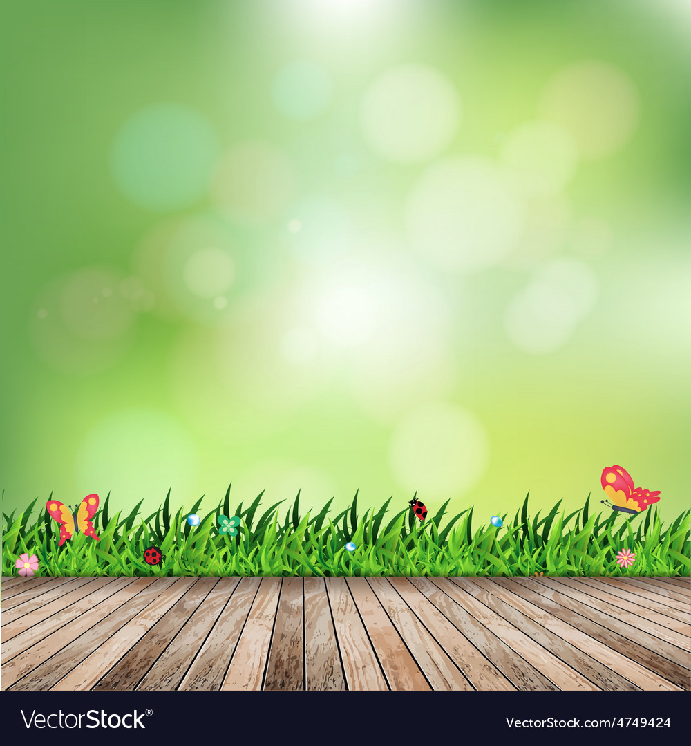 Fresh spring green grass with green bokeh