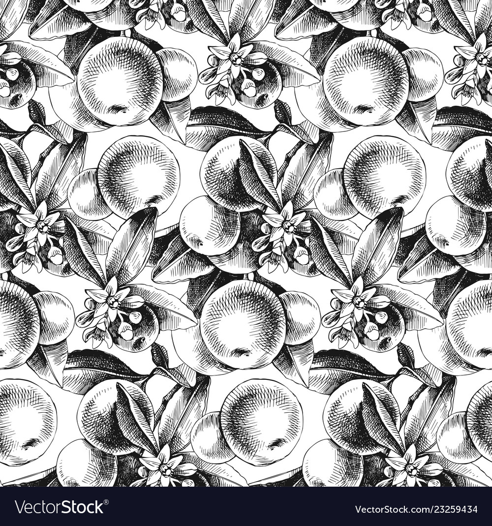Seamless pattern with mandarin branches