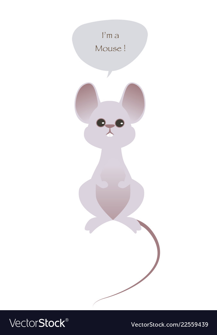 Cute mouse isolated on white background and