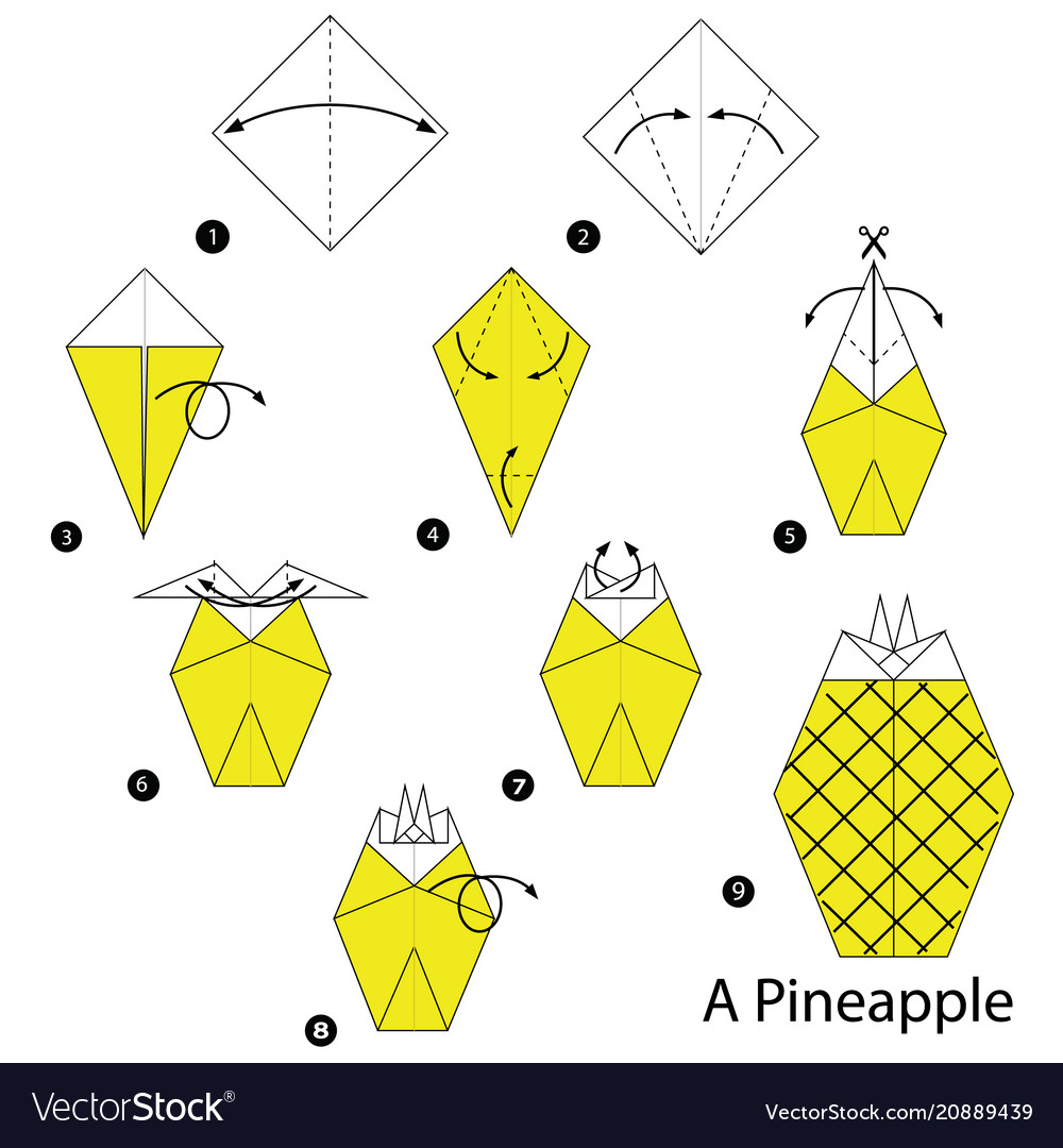 Step Instructions How To Make Origami A Pineapple Vector Image 3d Diagram Free Download