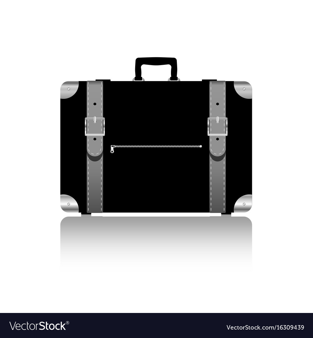 Travel bag with belts in silver color vector image