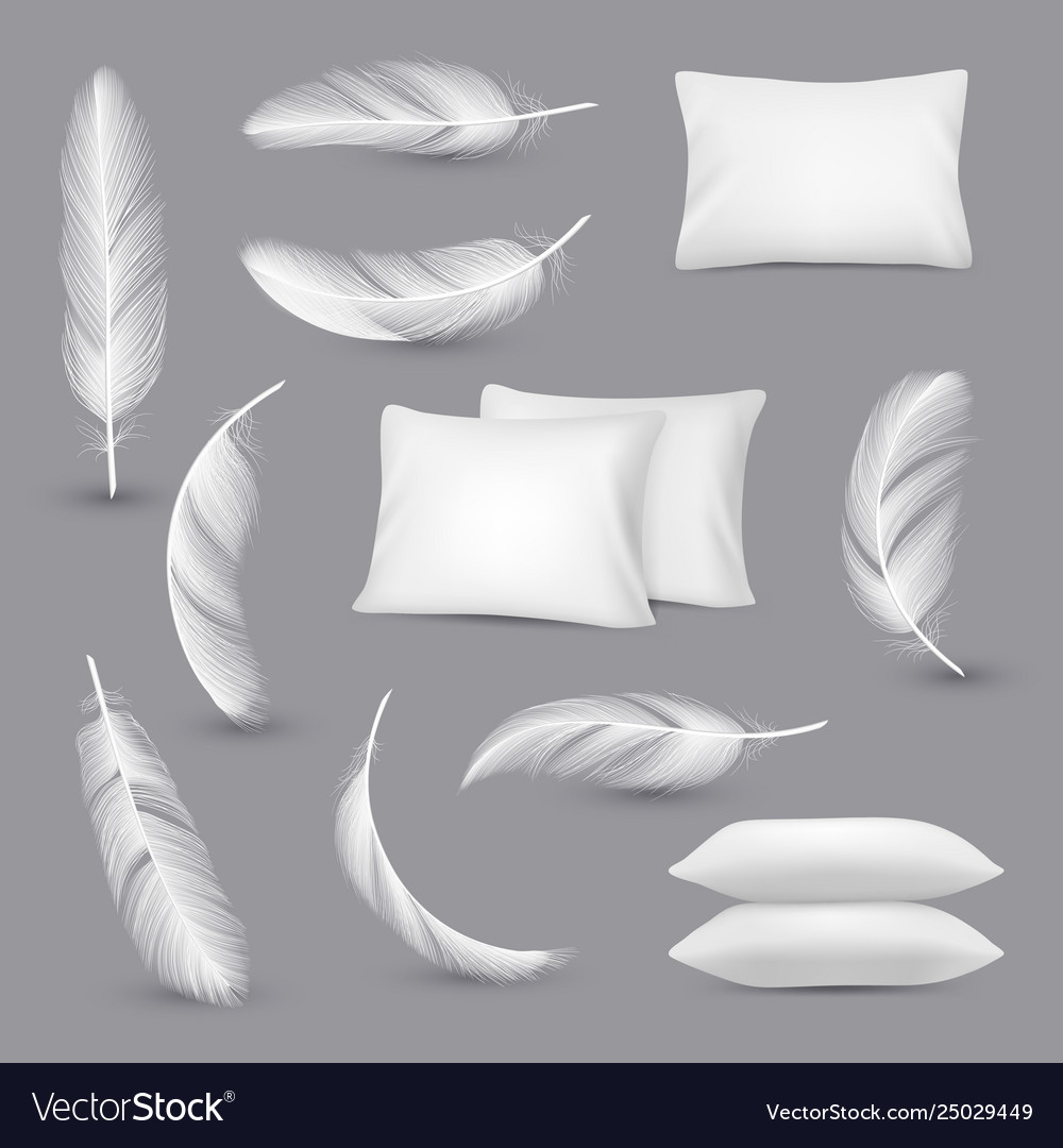 White pillows wind feathers for bedroom rectangle