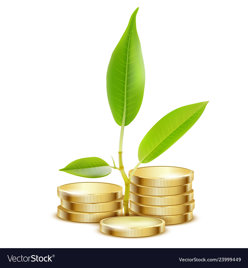 Young green sprout from pile of gold coins