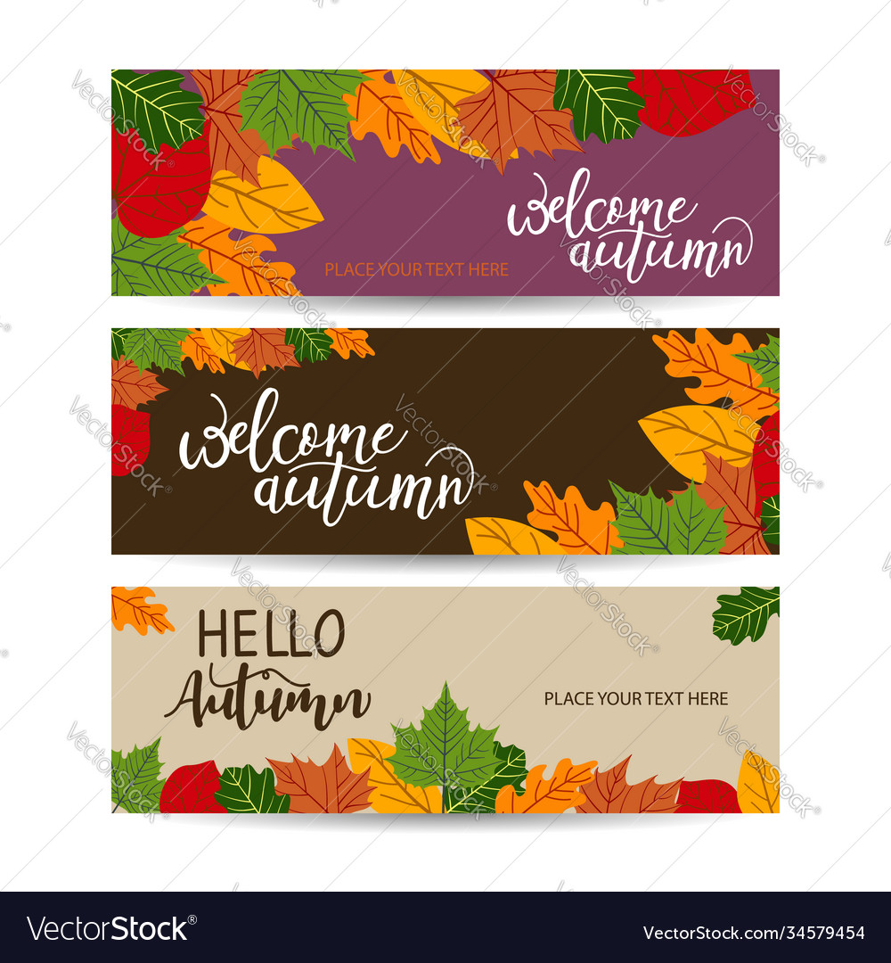 Autumn sale banner with leaves can be used for