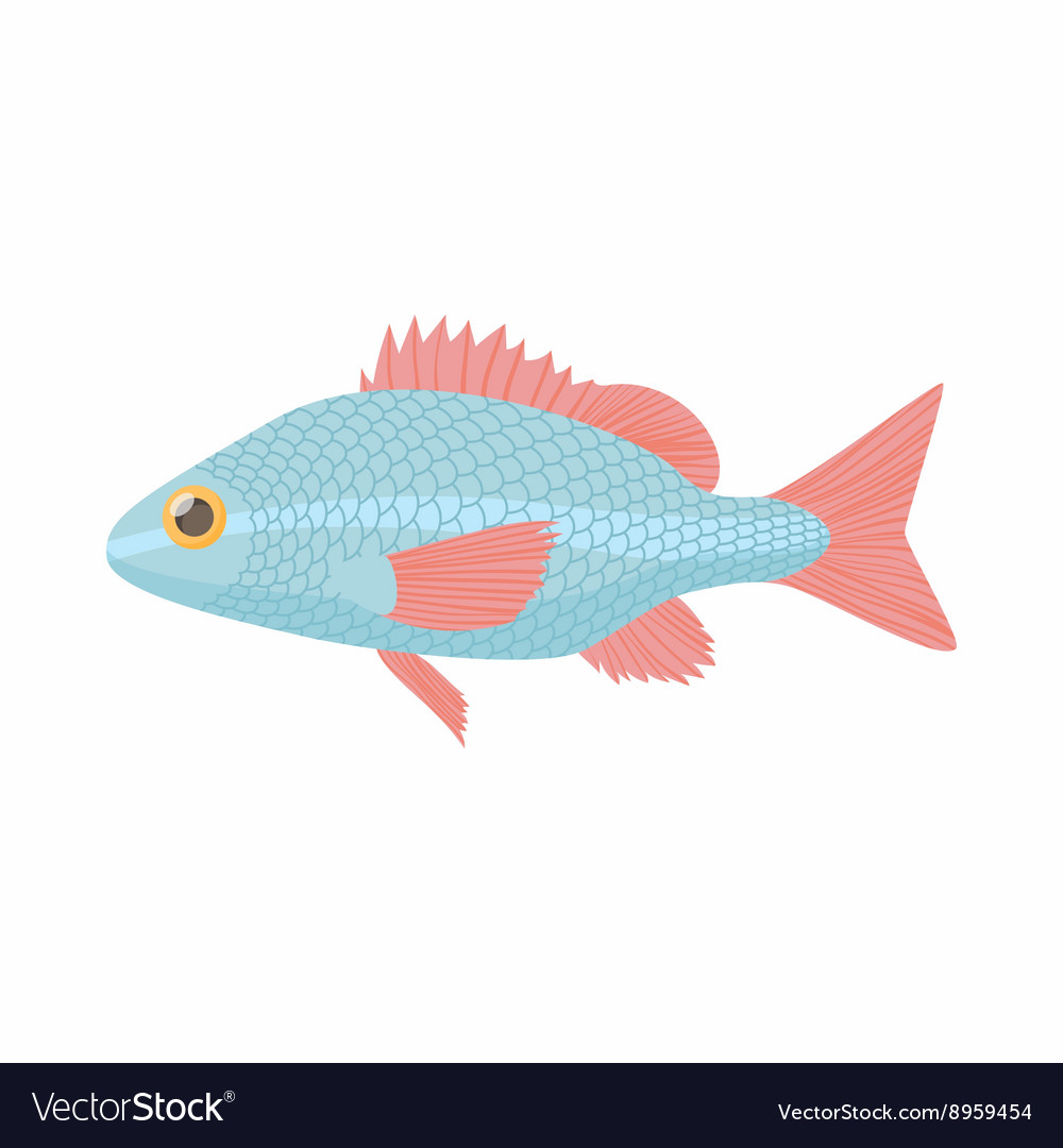 Fish carp icon cartoon style