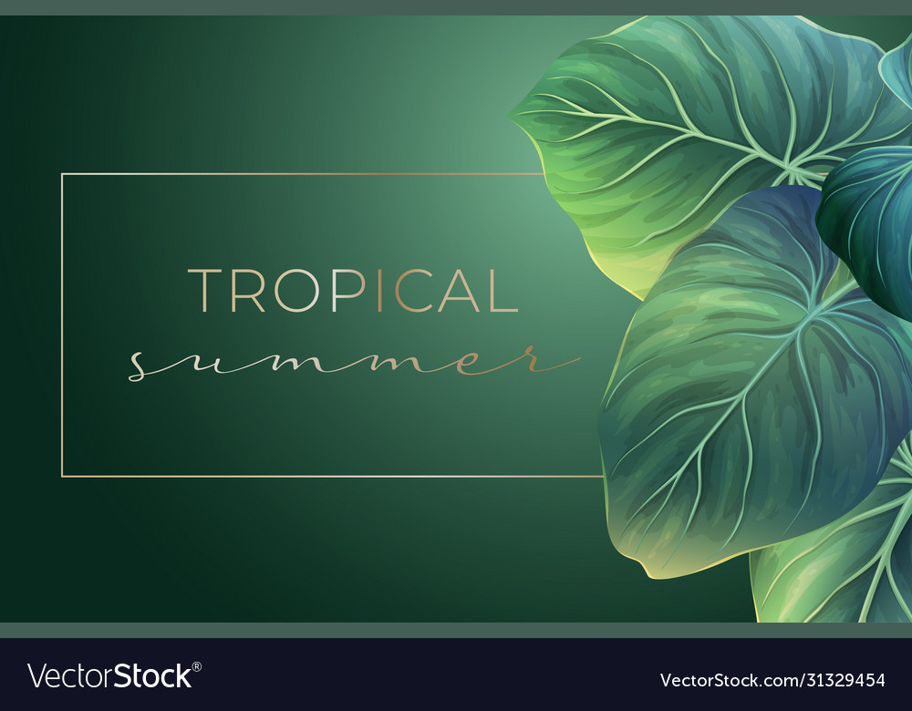 Summer banner with green palm leaves