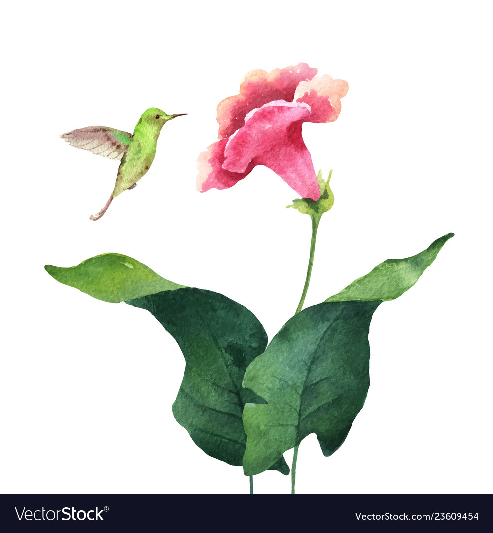 Watercolor card tropical leaves