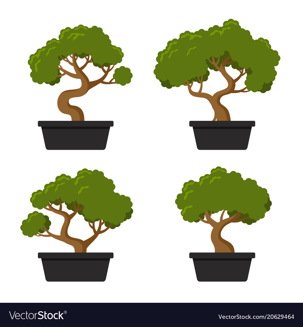Bonsai tree icon set