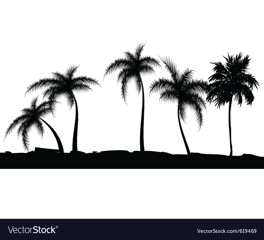 summer background with palm trees royalty free vector image rh vectorstock com palm tree vector clipart palm tree vector image