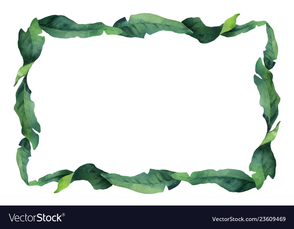 Watercolor green banner tropical leaves and