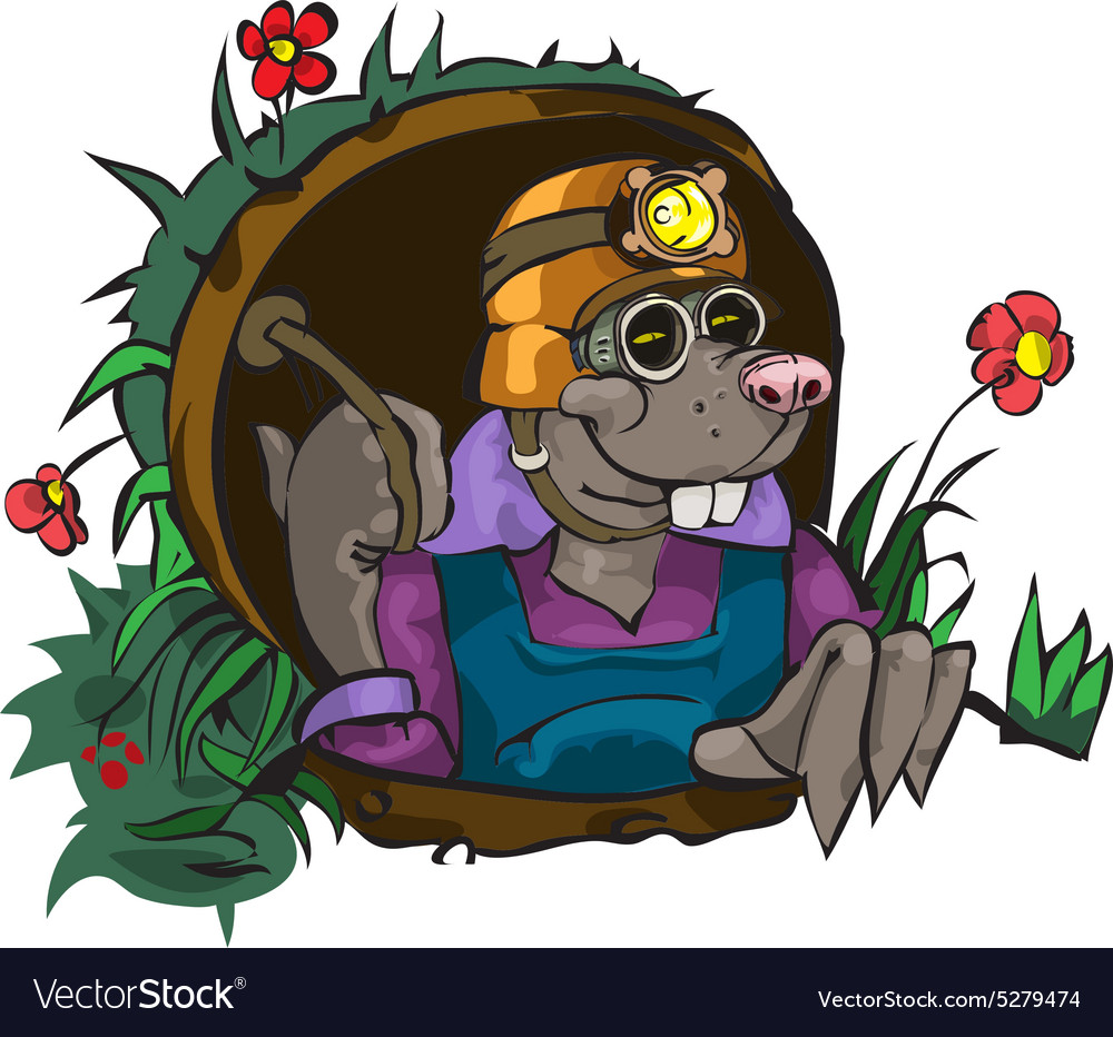 Cartoon Character Mole vector image