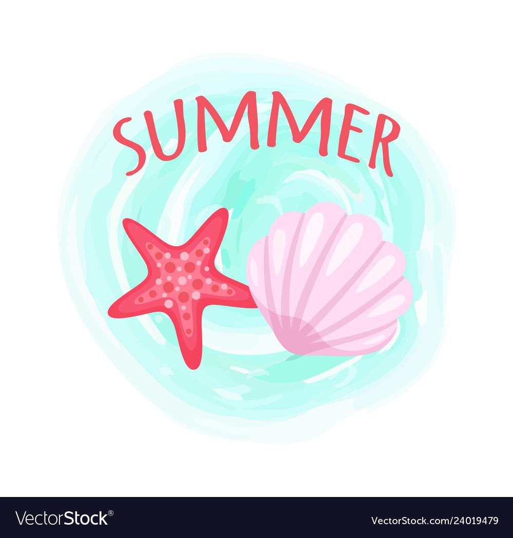 Starfish and seashell conch closeup mollusk set