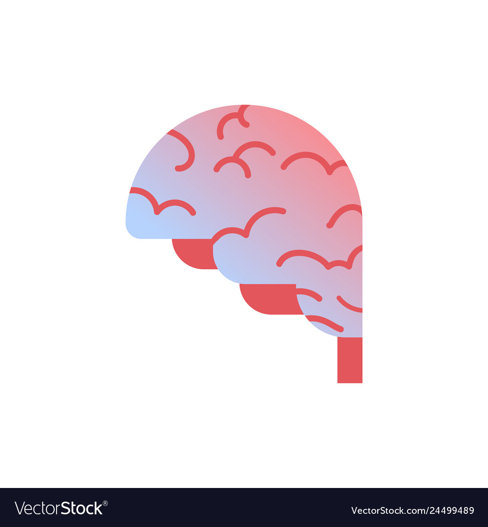 Brain icon human organ anatomy healthcare medical