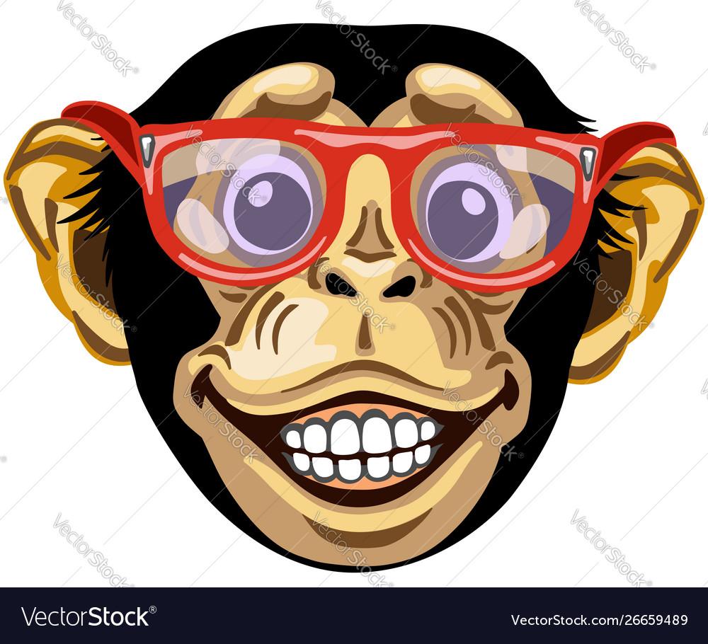 Head cartoon chimpanzee