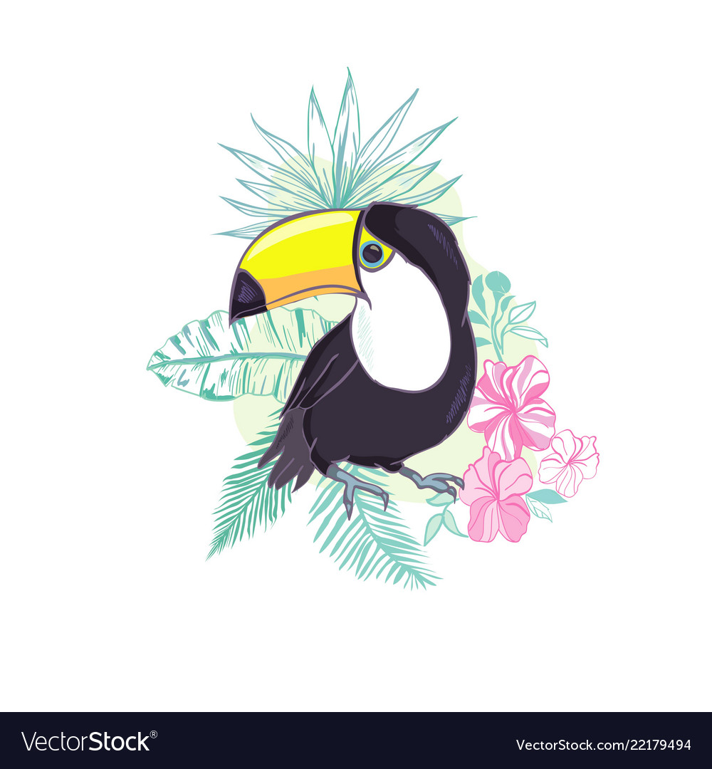 An of a nice toucan in format a cute toucan bird