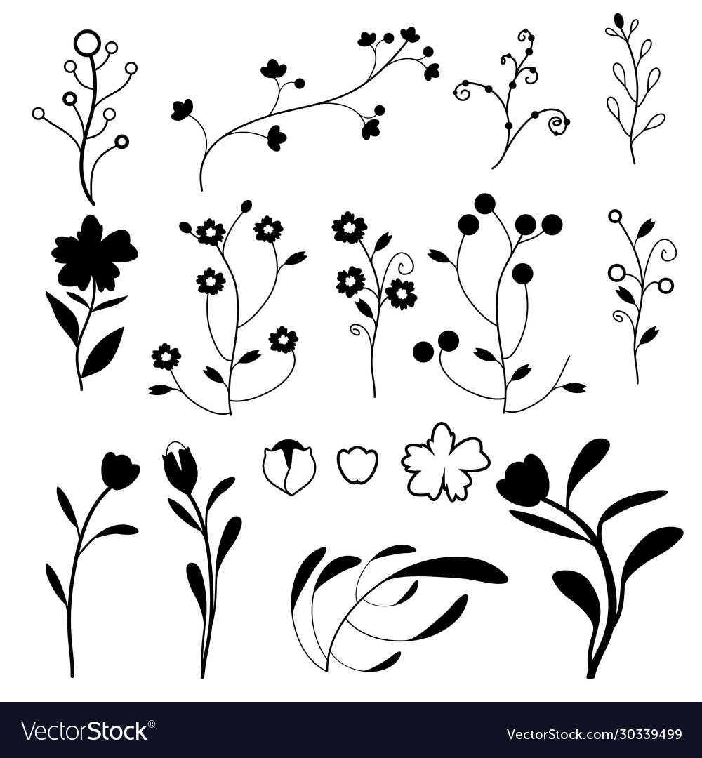 Doodle plants collection on white background