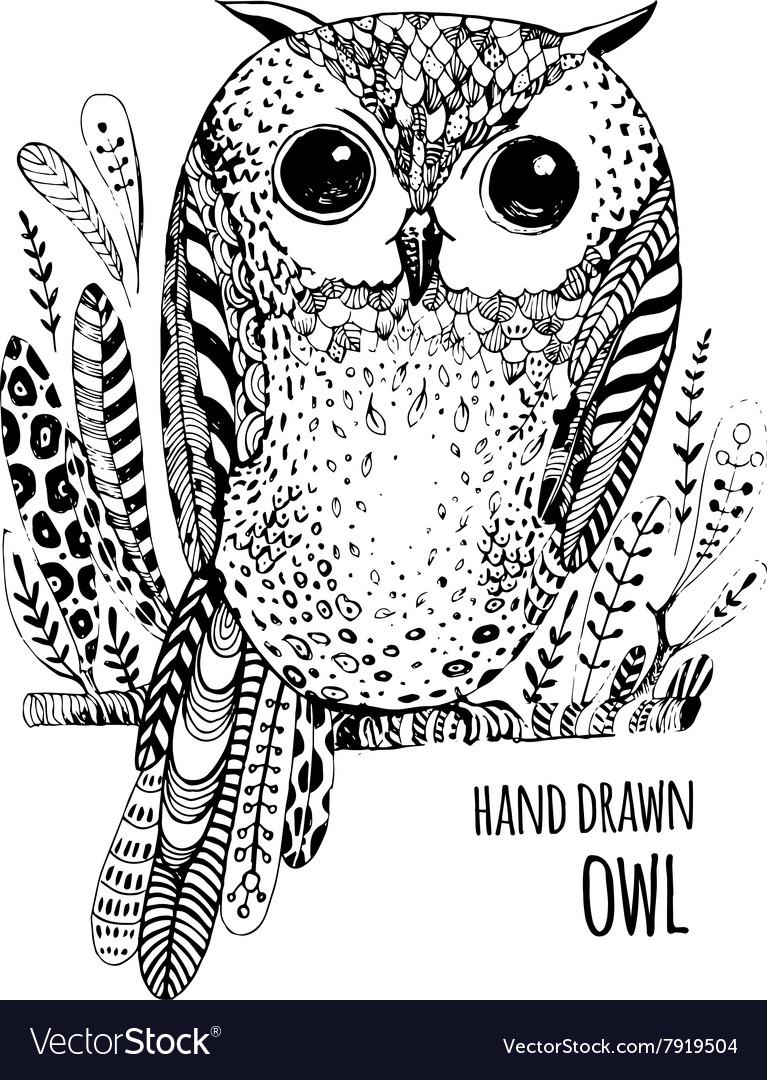 Hand drawn bird Art Coloring book
