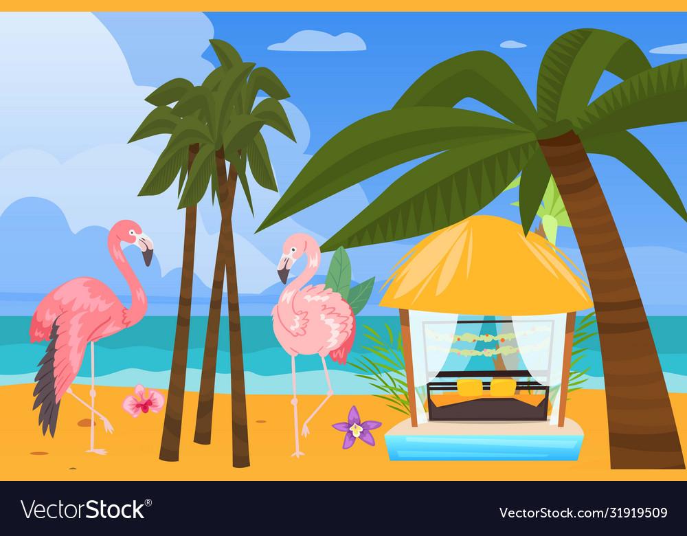 Beach ocean coast summer resort background