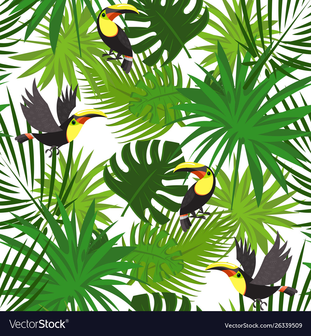 Tropical toucan pattern cartoon style