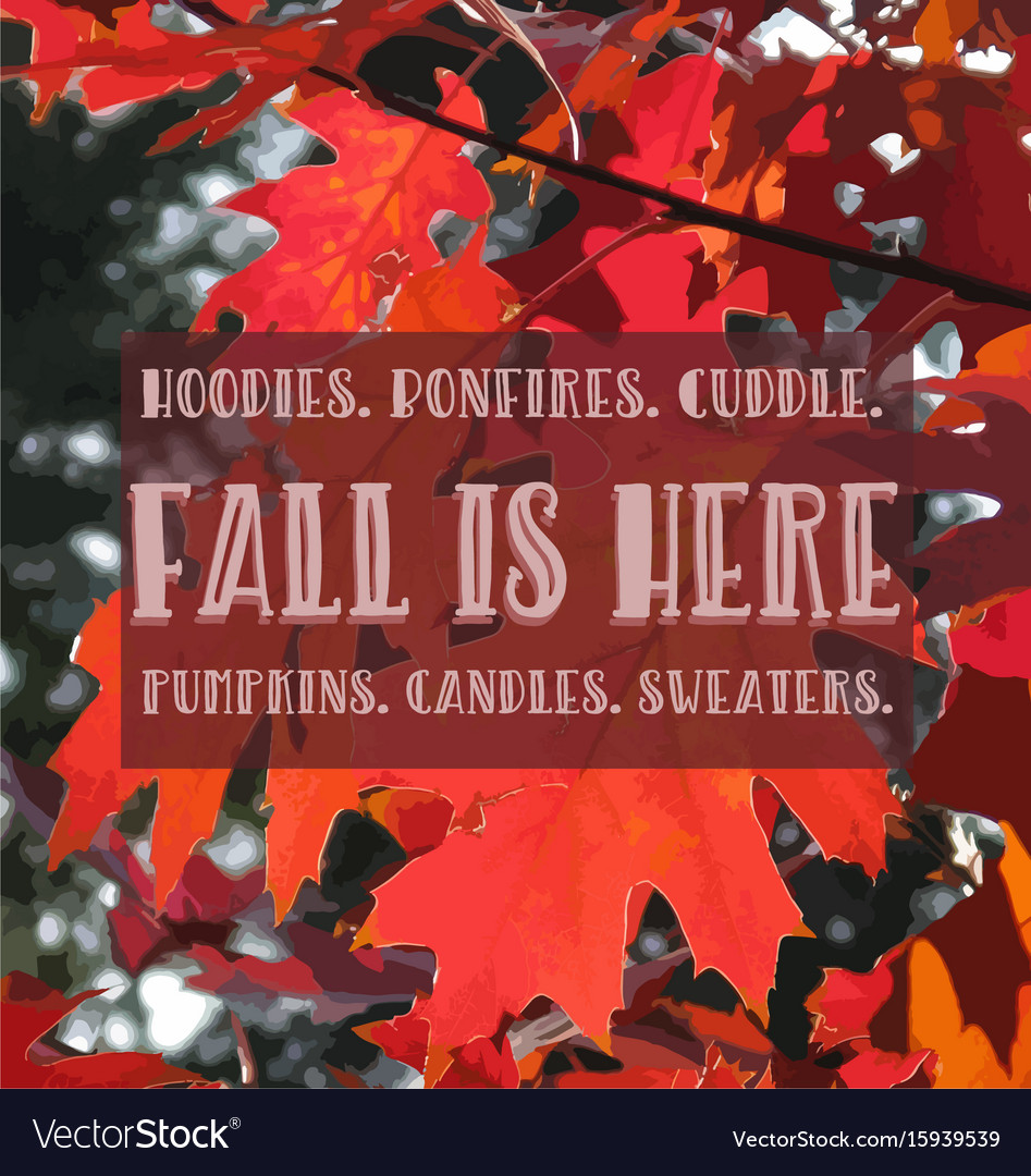 Fall quote vector image