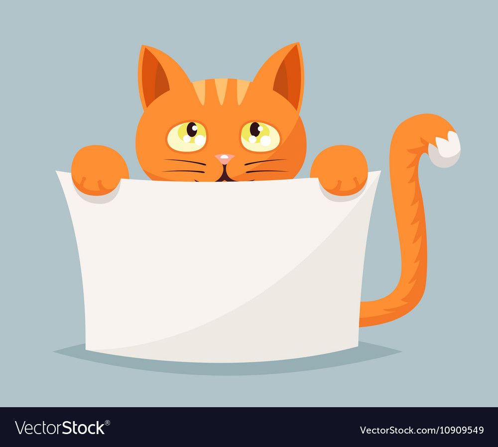 Cat beggar help animals cartoon character vector image