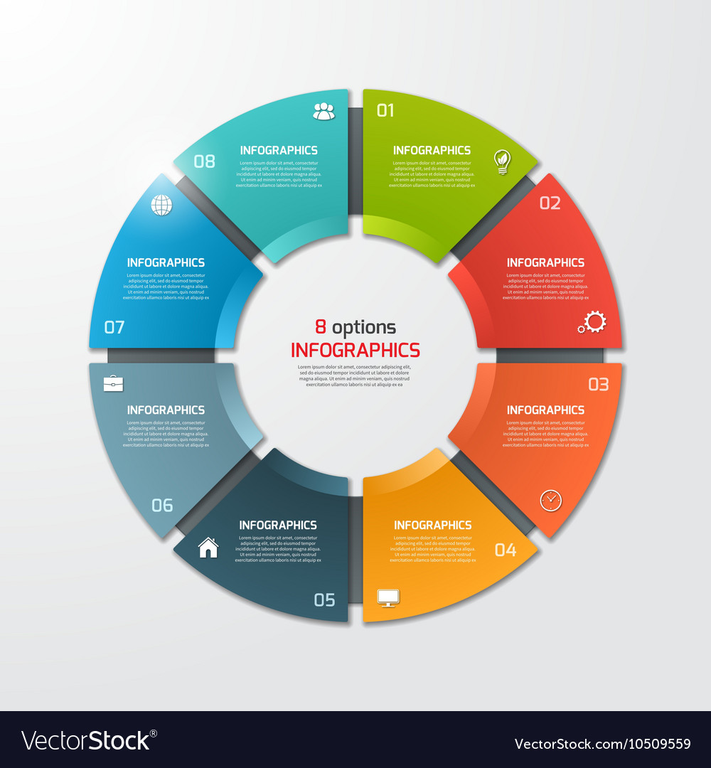 Pie chart infographic template 8 options vector image
