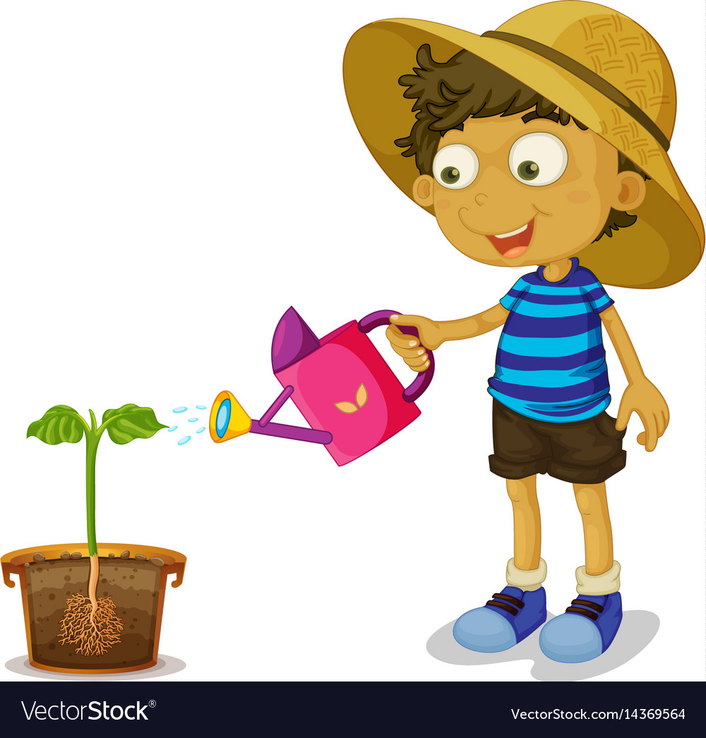 Boy watering plant on white background Royalty Free Vector