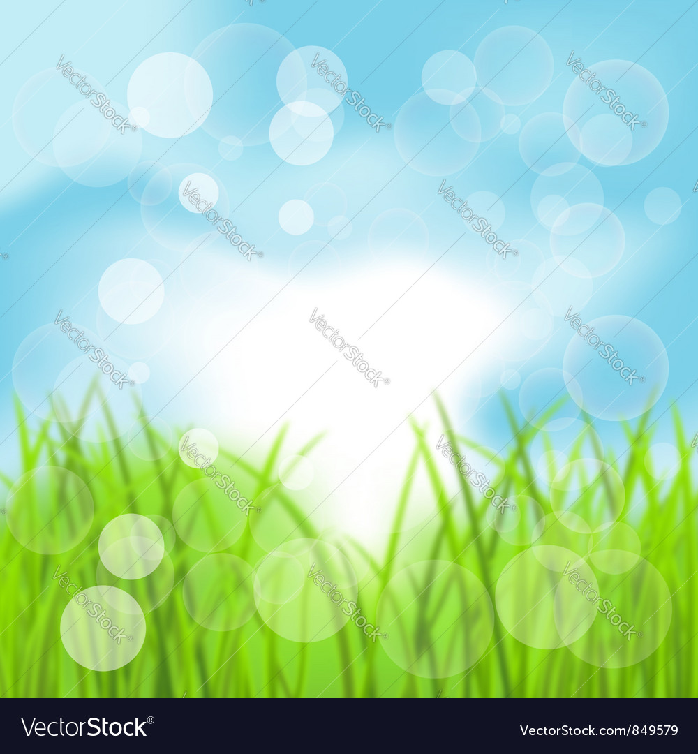 Spring Bokeh Background with Grass