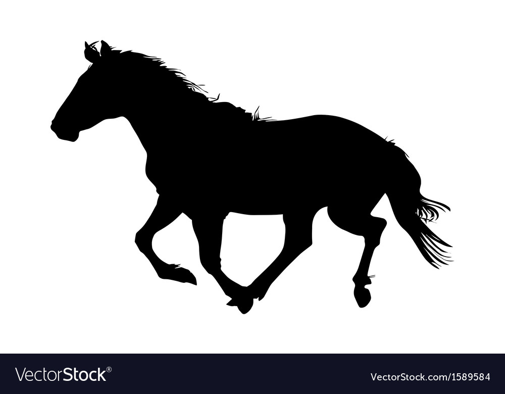 Silhouette of the black horse
