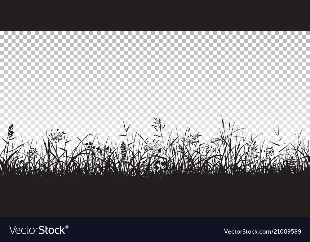 Black silhouettes grass