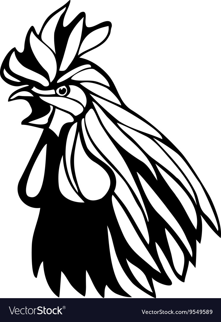 rooster head cartoon - 744×1080