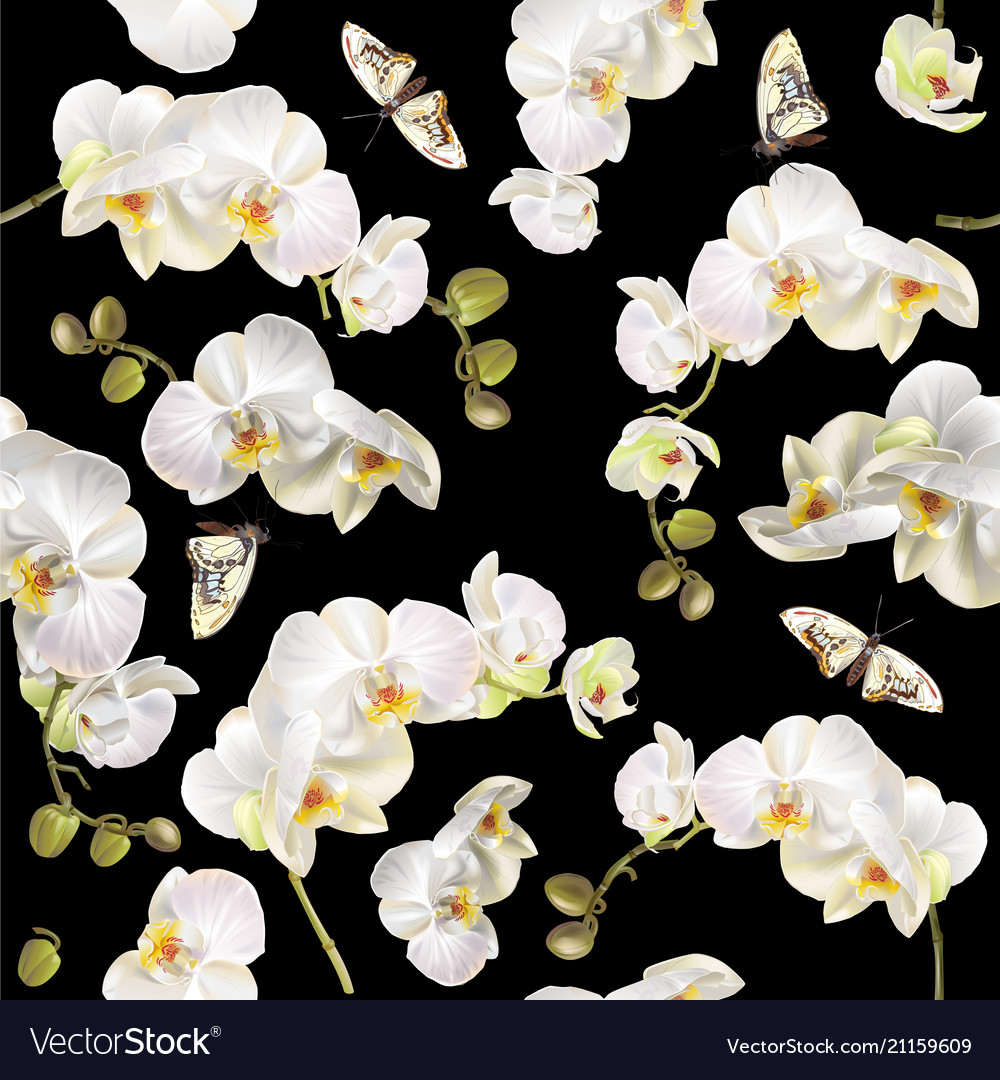 Floral orchid pattern