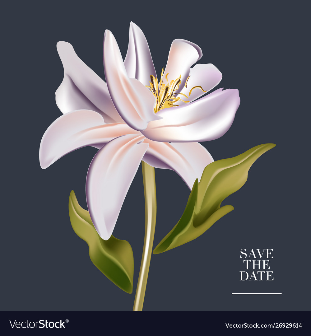 Botanical watercolor magnolia flower wedding