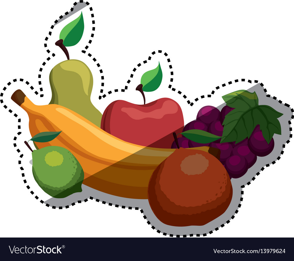 Delicious and healthy food vector image