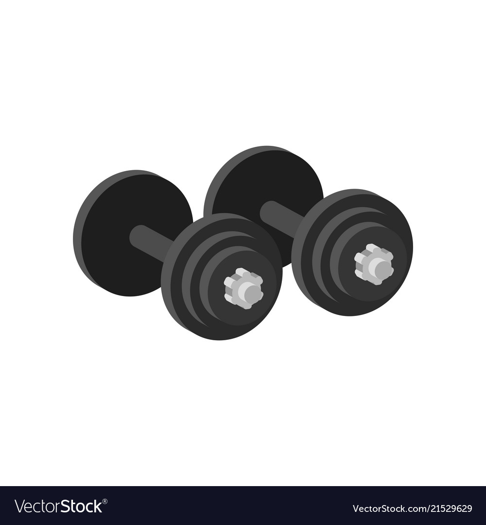 Pair of heavy dumbbells for exercise or muscle