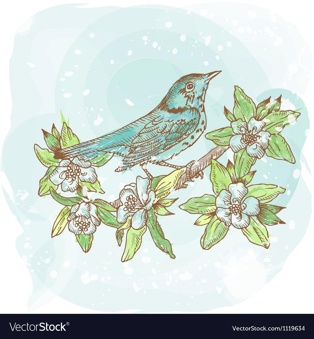 Background spring bird