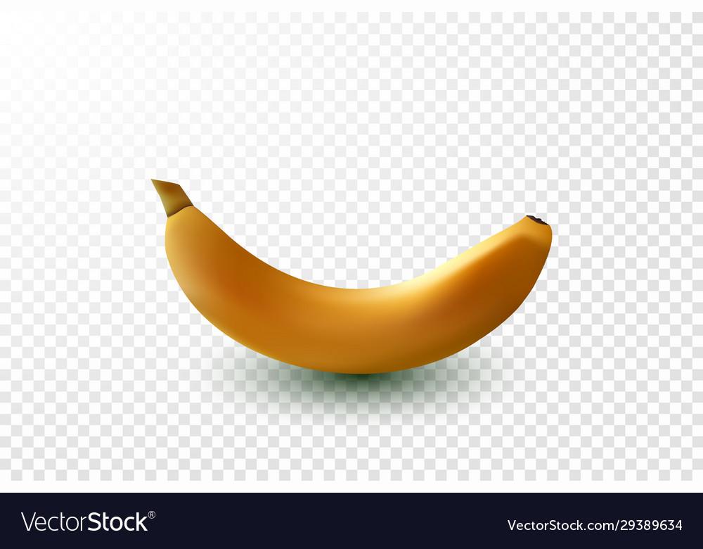 Detailed shiny yellow banana