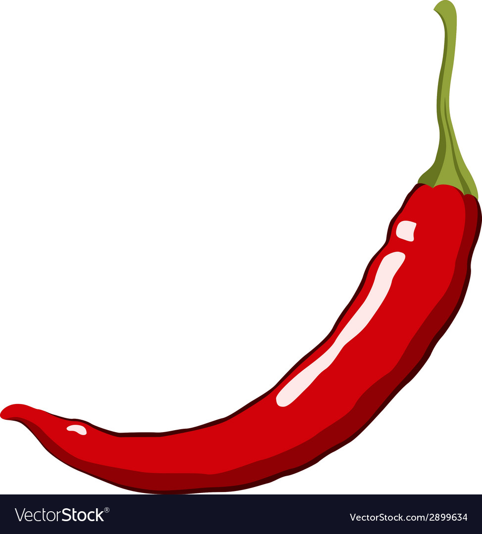 red hot chili pepper royalty free vector image rh vectorstock com chili peppers vector free chili pepper vector template