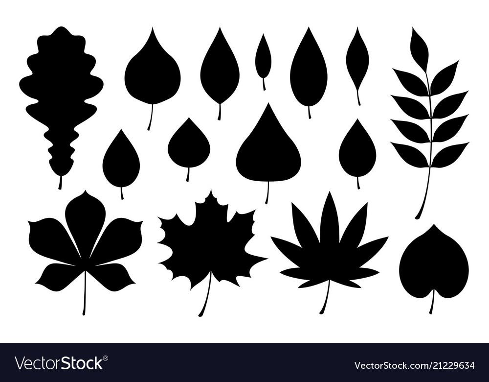 Set black autumn leaves