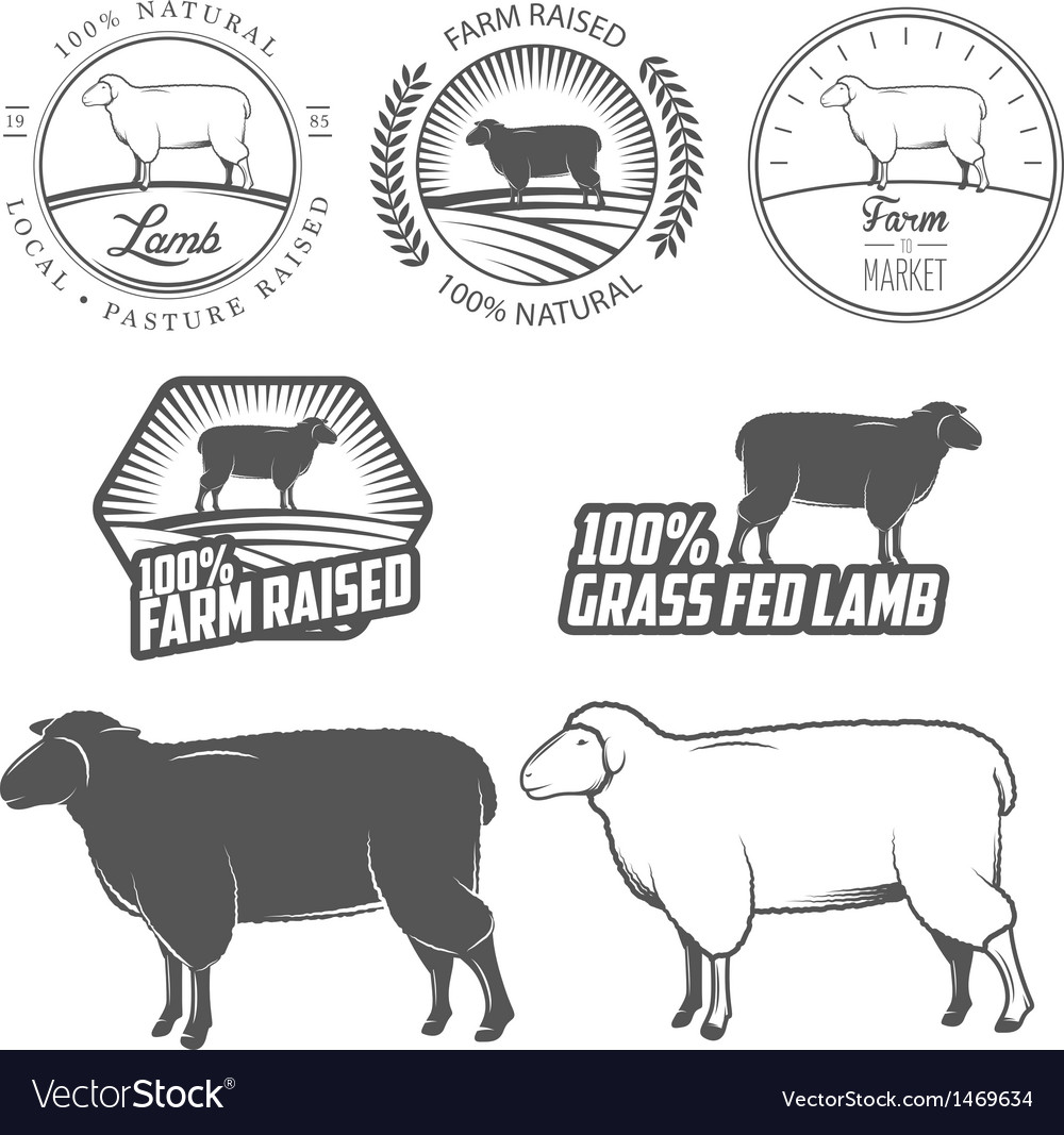 Set of lamb labels badges and design elements vector image