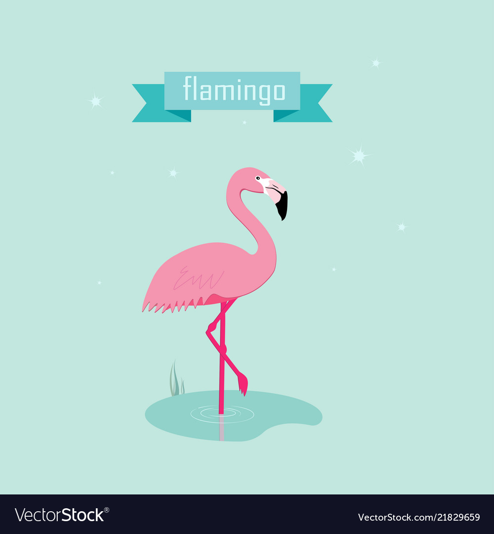 Cute pink flamingos