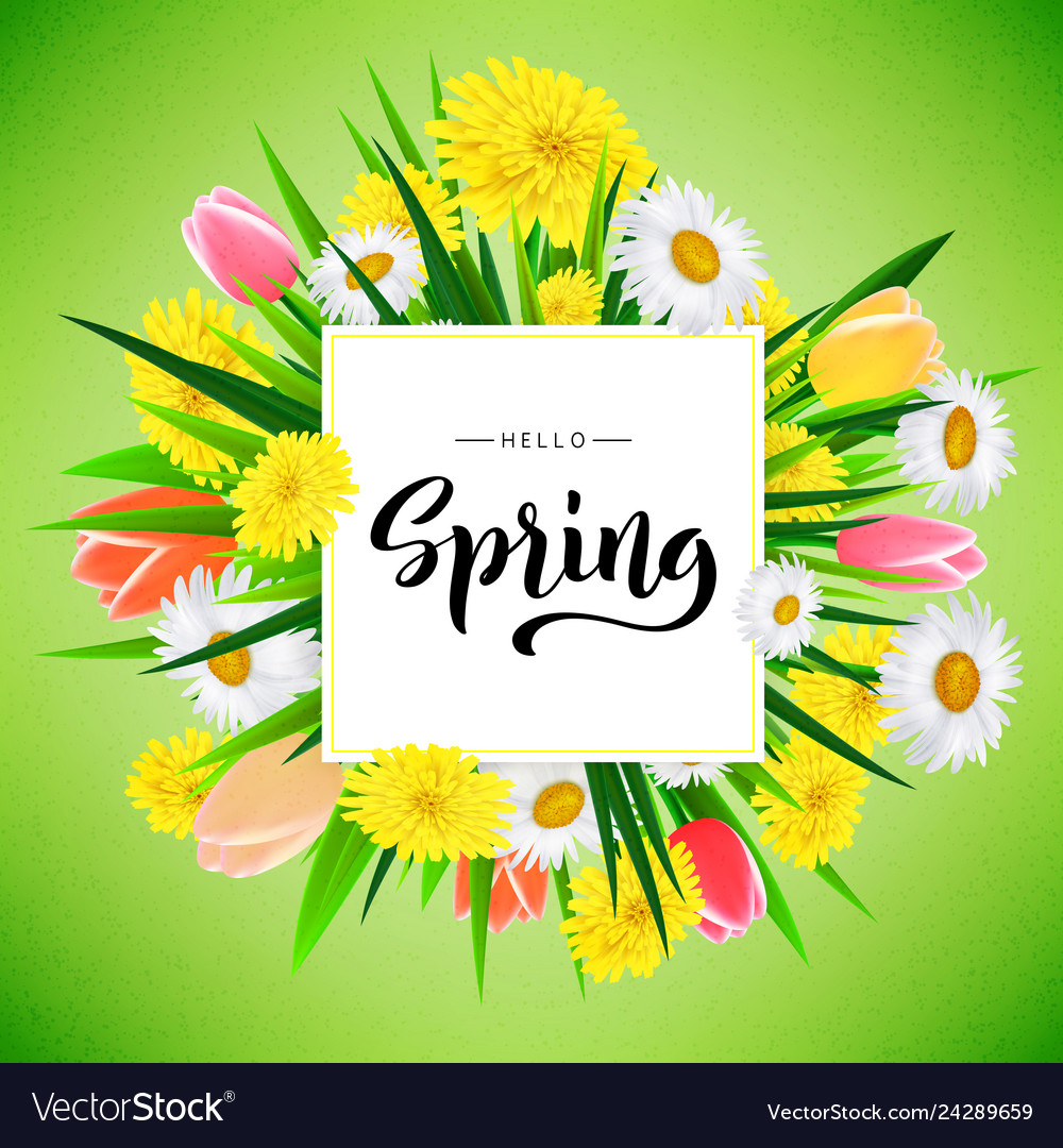 Hello spring banner background template with