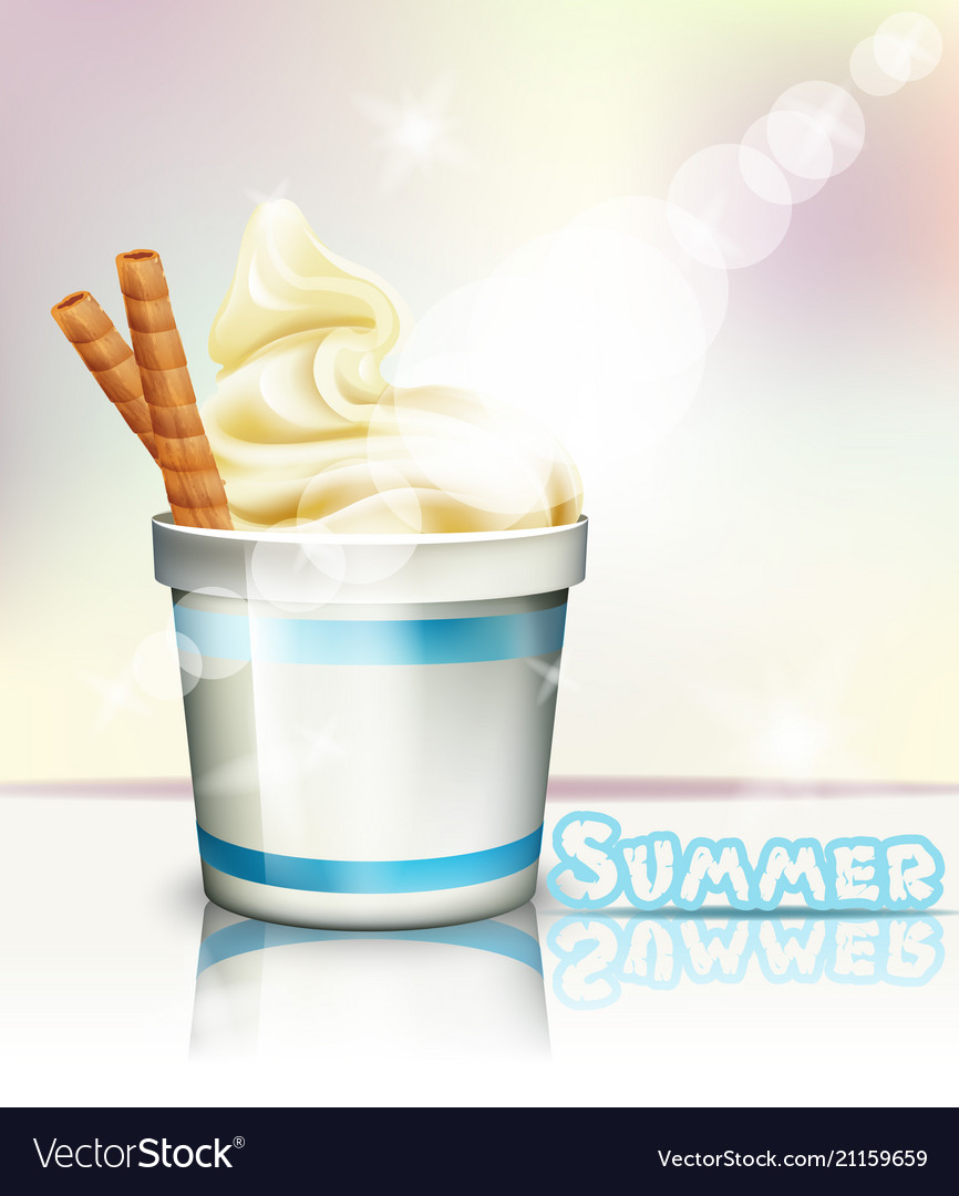 Ice cream realistic summer delicious vector image