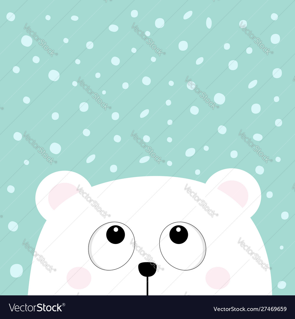 Polar white little small bear cub head face