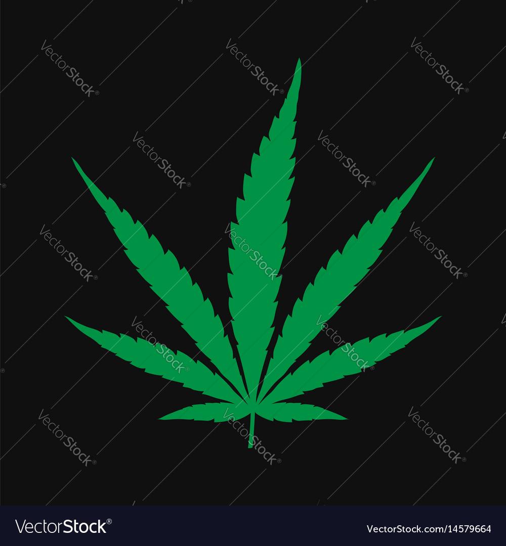 Marijuana cannabis leaf vector image