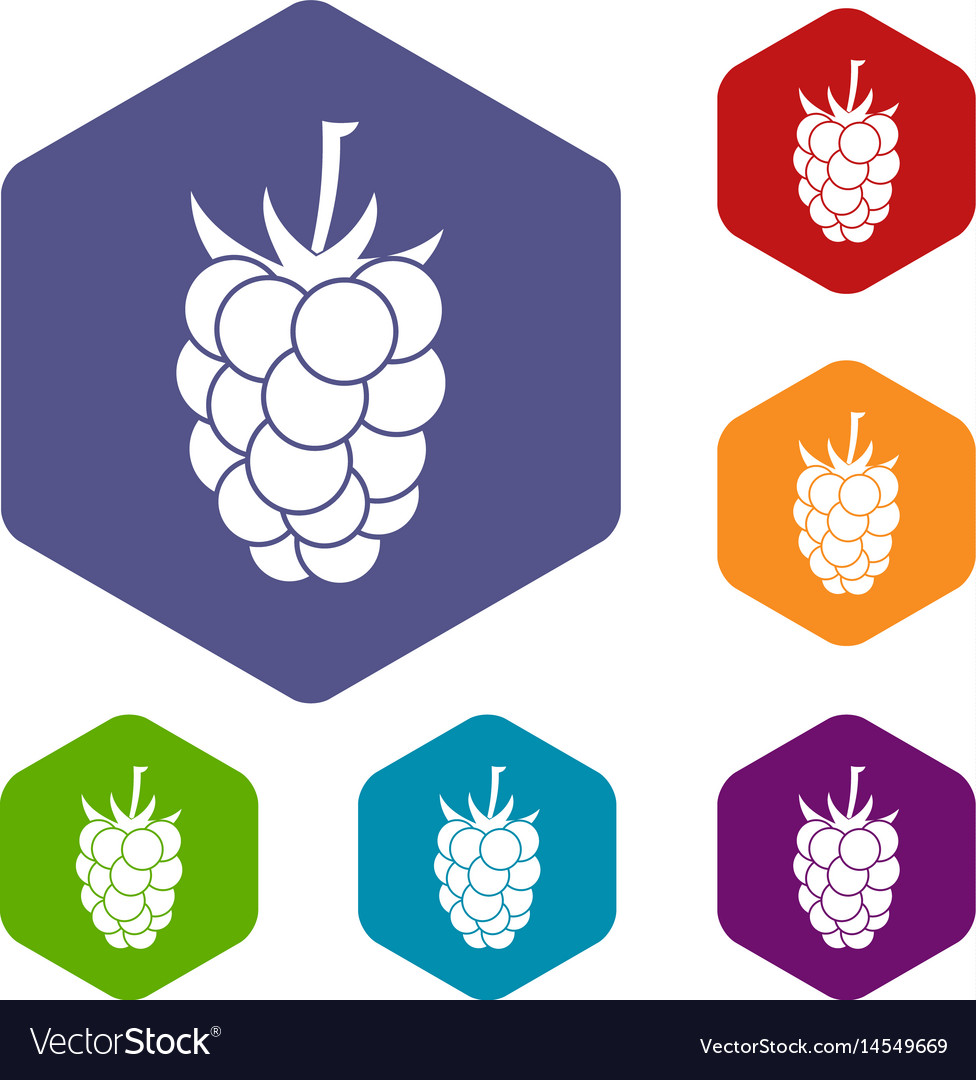 Blackberry fruit icons set hexagon