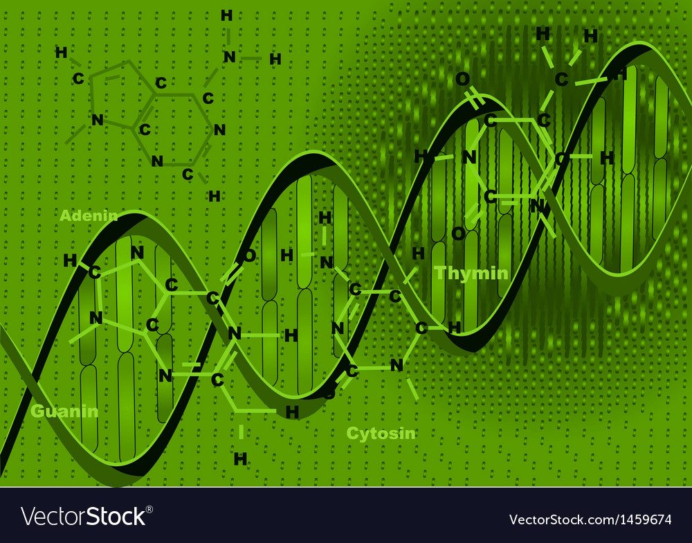 Background with DNA vector image
