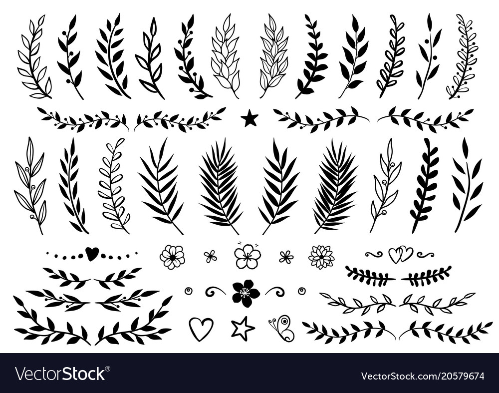 Set of hand drawn branches and flowers vector image