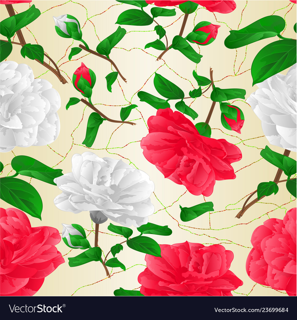Seamless texture red and white flowers camellia